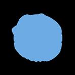 AOUI Verona Logo